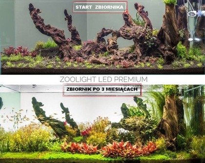 LED Lamp PREMIUM  PLANT+ RED  Plant growth