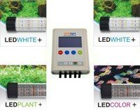 Set of 4 LED lamps Premium with the ZOOLIGHT controller