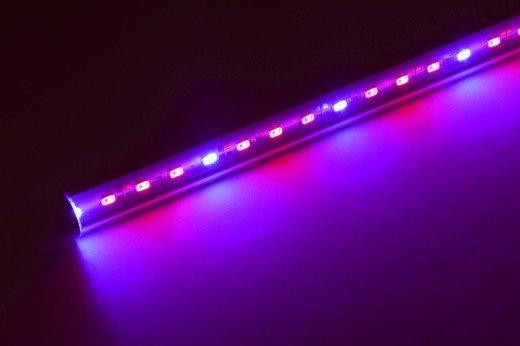 Lampa Led Eko Plant 100 Oświetlenie Dla Roślin