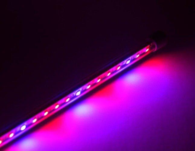 Lampa Led Eko Plant Oświetlenie Dla Roślin Oświetlenie Led